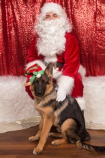 PetValu-PPPH-Holiday2017-web-4217