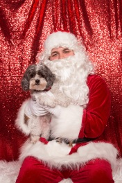 PetValu-PPPH-Holiday2017-web-4220