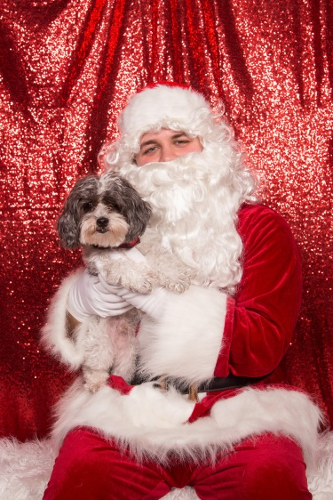 PetValu-PPPH-Holiday2017-web-4220