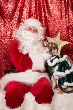 PetValu-PPPH-Holiday2017-web-4259