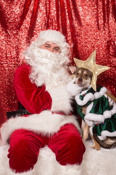 PetValu-PPPH-Holiday2017-web-4259