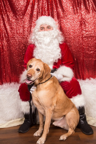PetValu-PPPH-Holiday2017-web-4282