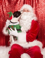 PetValu-PPPH-Holiday2017-web-4308