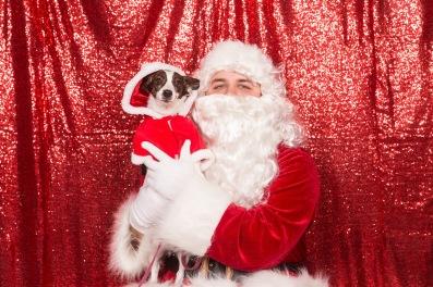PetValu-PPPH-Holiday2017-web-4330