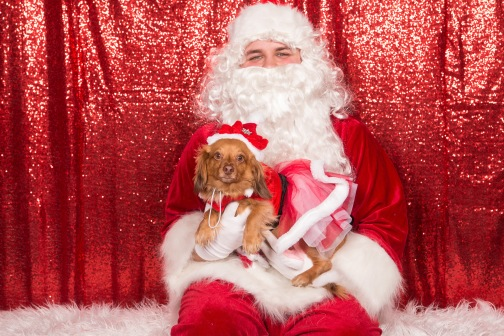 PetValu-PPPH-Holiday2017-web-4343
