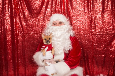 PetValu-PPPH-Holiday2017-web-4375