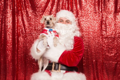 PetValu-PPPH-Holiday2017-web-4392
