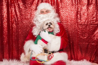 PetValu-PPPH-Holiday2017-web-4419