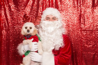 PetValu-PPPH-Holiday2017-web-4447