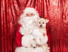 PetValu-PPPH-Holiday2017-web-4482
