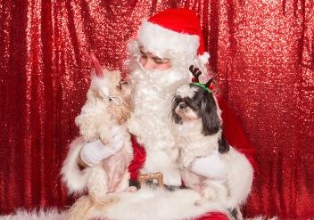 PetValu-PPPH-Holiday2017-web-4489